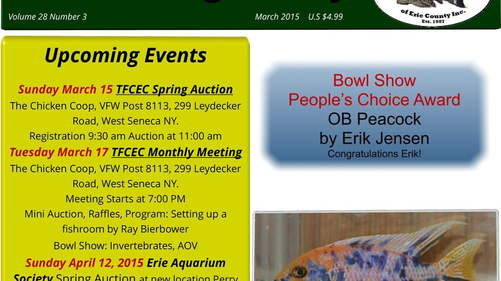 TFCEC_newsletter_mar201501-1