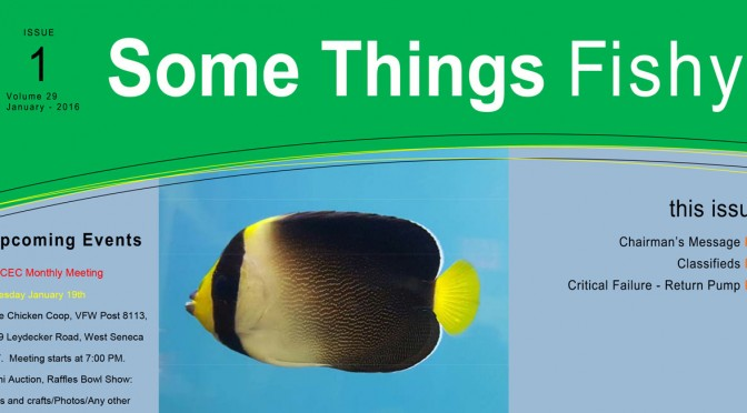 Some Things Fishy Issue 1 Vol 29 January 2016