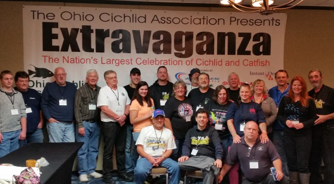 2015 OCA Extravaganza