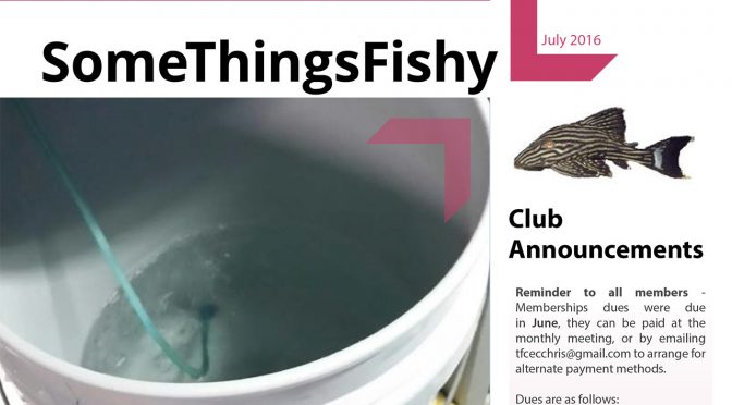 SOME THINGS FISHY ISSUE 7 VOL 29 July 2016