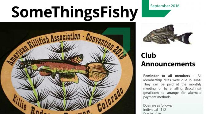 SOME THINGS FISHY ISSUE 8 VOL 29 September 2016