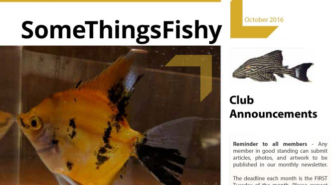SOME THINGS FISHY ISSUE 9 VOL 29 October 2016