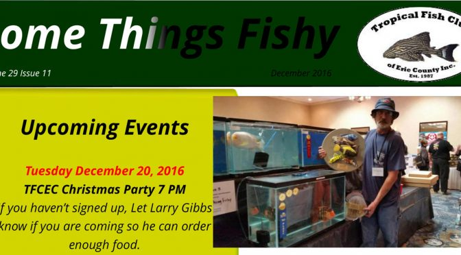 SOME THINGS FISHY ISSUE 11 VOL 29 December 2016