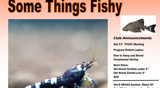 SOME THINGS FISHY ISSUE 8 VOL 30 OCTOBER 2017