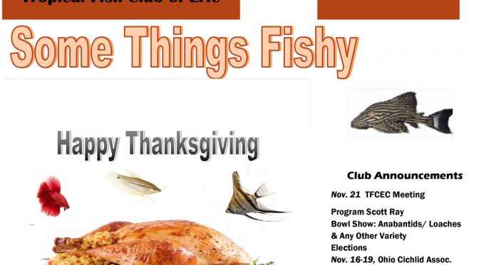 SOME THINGS FISHY ISSUE 9 VOL 30 NOV/DEC 2017
