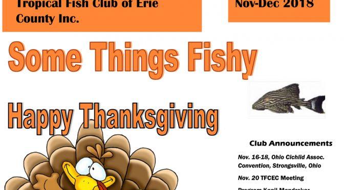 SOME THINGS FISHY ISSUE 6 VOL 31 NOV/DEC 2018