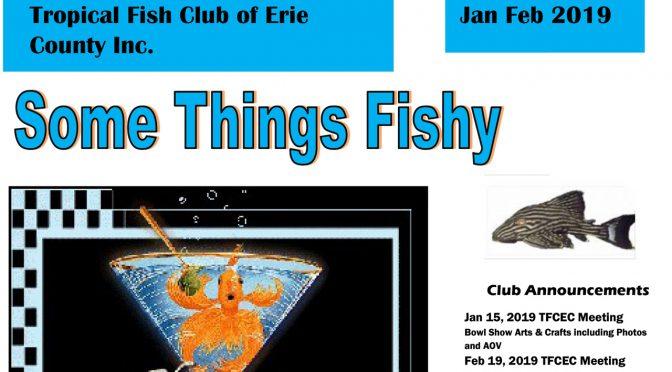 SOME THINGS FISHY ISSUE 1 JAN/FEB 2019
