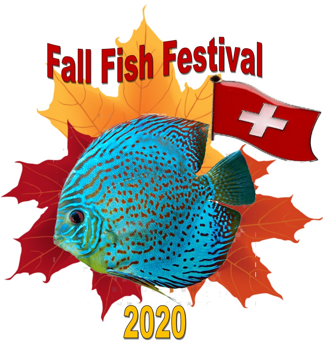 2020 Fish Festival Logo